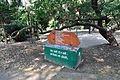 Acharya Jagadish Chandra Bose Indian Botanic Garden - Howrah 2011-01-08 9825.JPG
