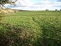 Across the fields - geograph.org.uk - 1608917.jpg