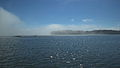 Advection fog in Helsinki 2014.jpg