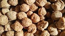 Soybean - Wikipedia