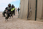 Afghan National Army NCOs demonstrate violence-of-action in clearing a compound DVIDS508603.jpg