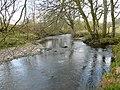 Afon Merddwr - geograph.org.uk - 785008.jpg