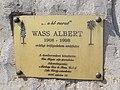 Albert Wass by Mátyás Kiss, plaque, 2018 Mezőkövesd.jpg