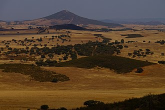 Alentejo - The Alentejo experiences prolonged periods without rain, leaving the fields dried as a result