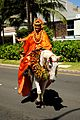 Aloha Floral Parade - Princess of Lanai (5088410103).jpg