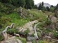 Alpengarten (Alpine Garden) - geo.hlipp.de - 26725.jpg