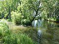 Alte Ilse Mündung 201506.jpg