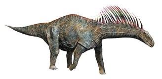 Amargasaurus - Life restoration of Amargasaurus