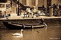 Amsterdam ^dutchphotowalk - panoramio (71).jpg