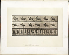 Animal locomotion. Plate 631 (Boston Public Library).jpg