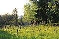 Arboretum de Lisieux coucher de soleil.jpg