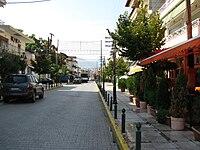 Aridea 228.jpg