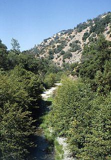 Arroyo Hondo (Santa Clara County)