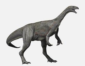 Asylosaurus - Life restoration