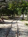 At Pardes Minkov - The Tarazina Tracks P1220126.JPG