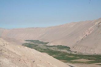 Azapa Valley - The Azapa Valley.