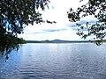 Břehyňský rybník - panoramio (1).jpg