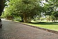 Bửu Long, Bien Hoa, Dong Nai, Vietnam - panoramio (34).jpg