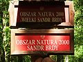 Bachorze (National Park Bory Tucholskie) (3).jpg