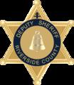 Badge-DeputySheriff.png