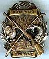 Badge Шуезеро.jpg