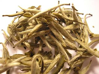 White tea one of several styles of tea which generally feature young or minimally processed leaves of the Camellia sinensis plant