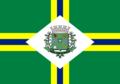 Bandeira de Paulínia.png