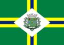 Bandeira de Paulínia