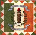 Bandiera del Secondo Reggimento d'Usseri della Prima Repubblica Cisalpina (dal 10.6.1798 al 27.4.1799).png