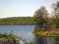 Basic Creek Reservoir.jpg