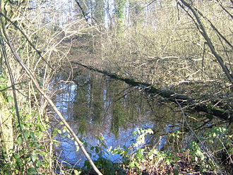 River Bourne, Kent - Site of John's Mill