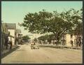 Bay Street, Nassau, Bahama Islands-LCCN2008679534.tif