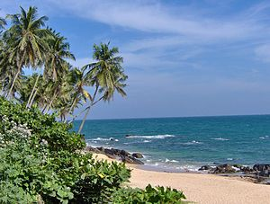 Beach of Tangalla, Sri Lanka