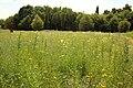 Beislovenpark Zottegem 11.jpg