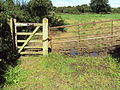 Benkid77 Puddington-Shotwick footpath 43 110809.JPG