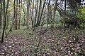 Bevisbury Camp - panoramio.jpg