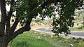 Bierain Sub-District, Jordan - panoramio (11).jpg