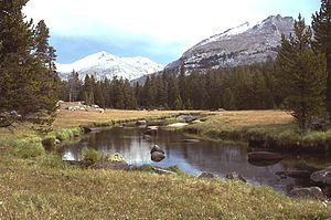 Big Sandy River (Wyoming) - Big Sandy Creek, Wyoming