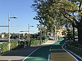 Bikeway and footpath along Brisbane River in Toowong, Queensland, Australia 04.jpg