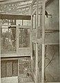 Bird notes (1908) (14745371761).jpg