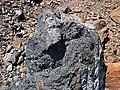 Black smoker rocks (sulfidic wad) (Helen Iron-Formation, Neoarchean, 2696-2749 Ma; Sir James Pit, Eleanor Iron Range, Ontario, Canada) 16 (48069871781).jpg