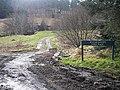 Blackblakehope Picnic Place - geograph.org.uk - 1187242.jpg