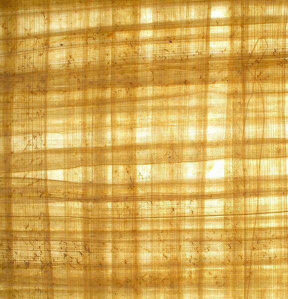 Archivo:Blank papyrus paper.jpg