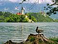 Bled (9190485551).jpg