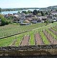 Blick über Nierstein zum Rhein - panoramio.jpg