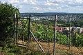 Blick vom Lemberg nach Feuerbach (1).jpg