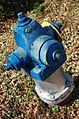 Blue hydrant.jpg