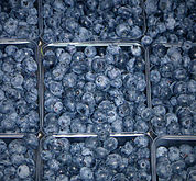 Blueberries at market.