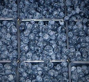 Amerikanska blåbär till försäljning