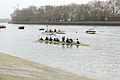 Boat Race 2014 - Main Race (52).jpg